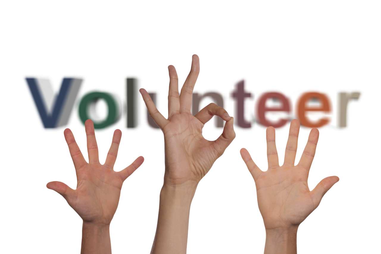 Top Volunteering Opportunities in Brisbane & Gold Coast , Queensland